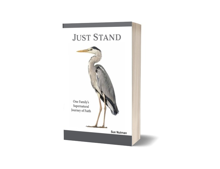 "Book cover for ""Just Stand"" with bird on front and white background"